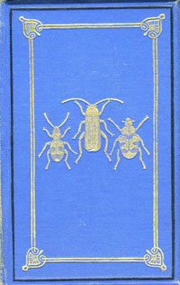 Common British beetles / by J.G. Wood (London, Routledge & Sons, 1875) STORE 176:15