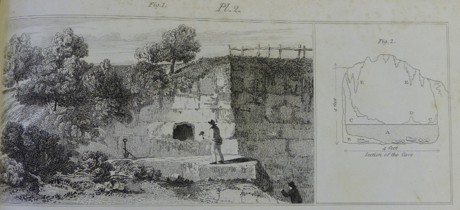 Buckland plate 2