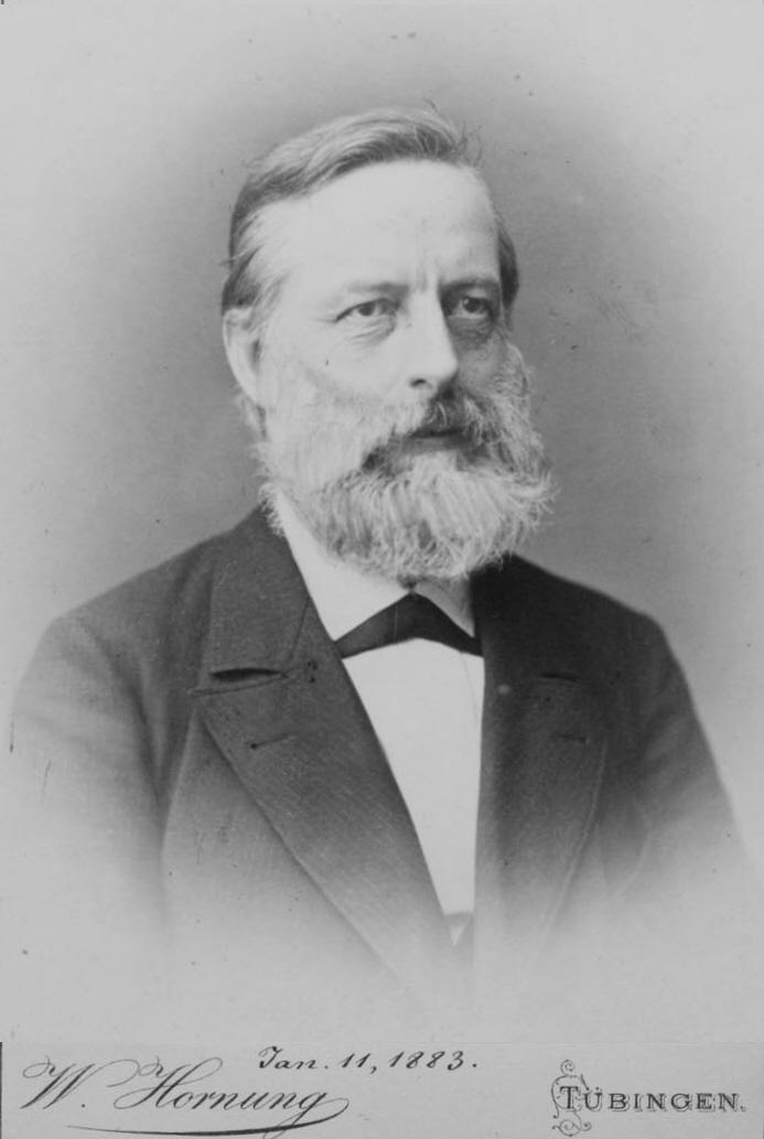 Julius Lothar Meyer (1830-1895)