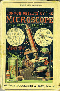Common objects of the microscope / by J.G. Wood (London, George Routledge and Sons, 1890) STORE 47:206