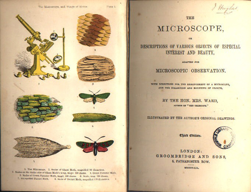 or, Descriptions of various objects of especial interest and beauty, adapted for microscopic observation with directions for the arrangement of a microscope, and the collection and mounting of objects / by Mrs Ward, 3rd ed. (London: Groomb