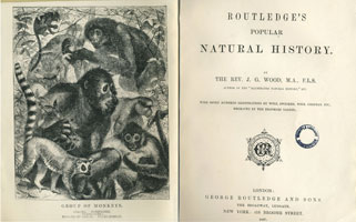 Routledge's popular natural history / by J.G. Wood (London, Routledge and Sons, 1867) STORE 176:14