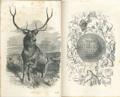 Natural history / by J.G. Wood (London, George Routledge and Sons, 1854) STORE 176:17