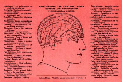 From a flier advertising 'The Brighton Phrenological Institution, Professor and Mrs. J. Millott Severn, advisers in careers, professions, businesses, trades, marriage'