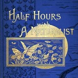 Front cover of blue cloth-bound edition of 'half hours with a naturalist'