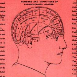 Flier showing the 'phrenological organs' of the head