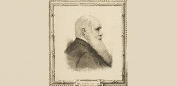 Charles Darwin, drawn in profile with a frame.